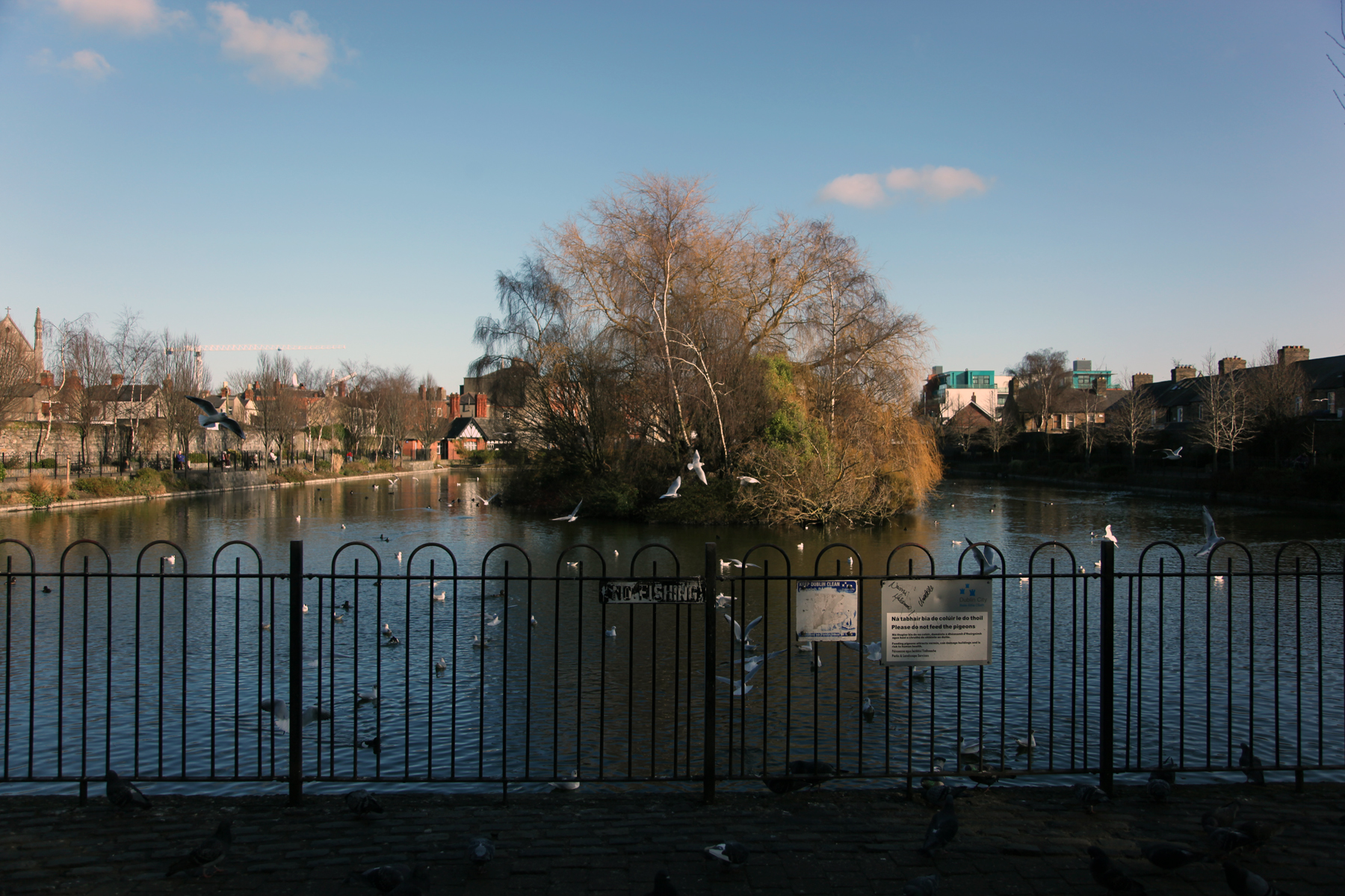 Blessington Street Basin Dublin 7 Built Dublin